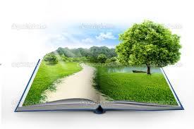 livre en lumière